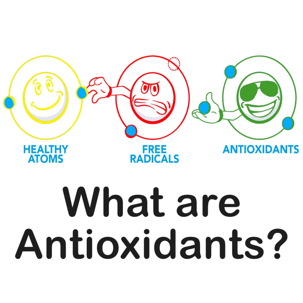 What are Antioxidants Article